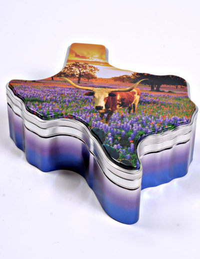 Texas Longhorn Tin